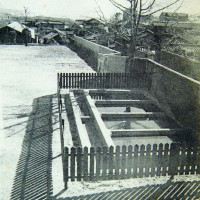 학교변천사 1955